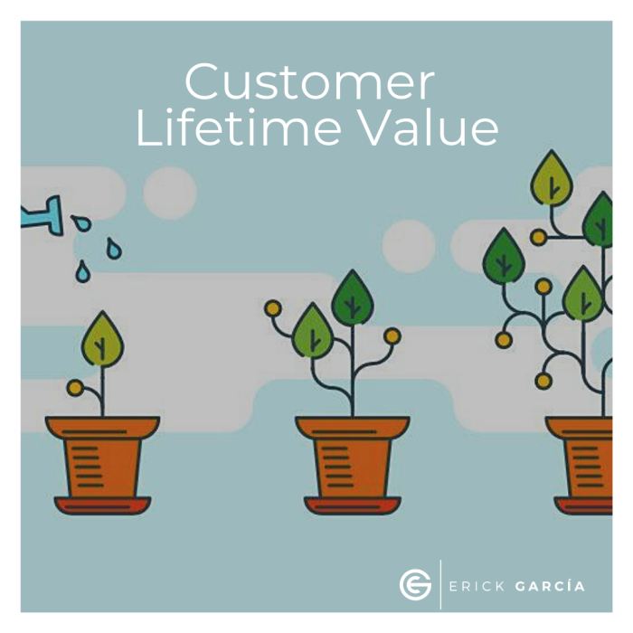 Customer Lifetime Value..png